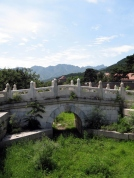 Bridge, Weeds, Mountains