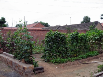 Garden Patch on Alleyway - Jixian