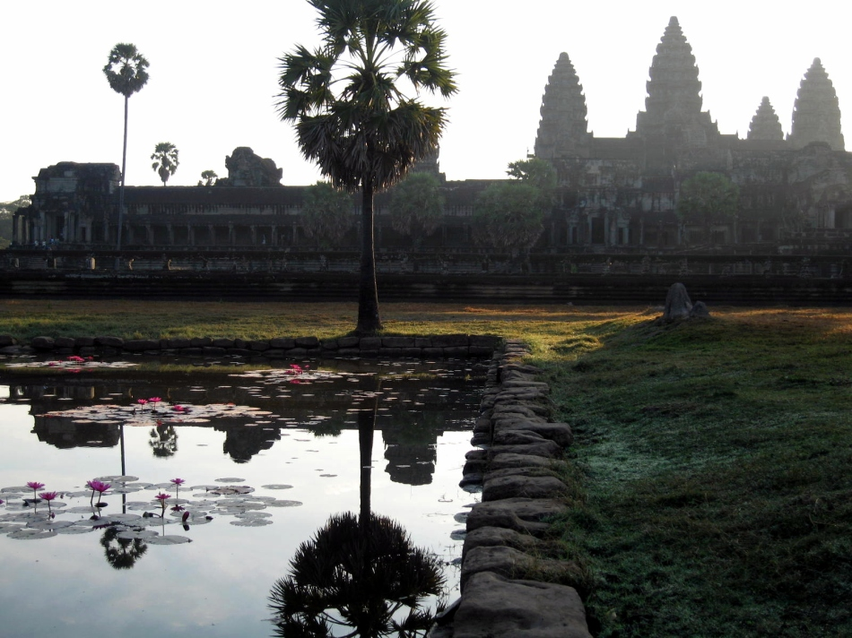 angkor-in-lily-pond-2