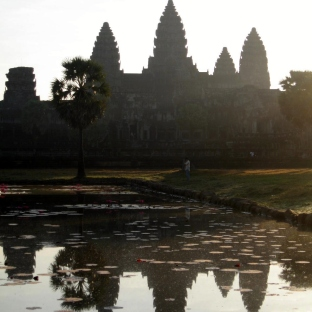 angkor-in-lily-pond