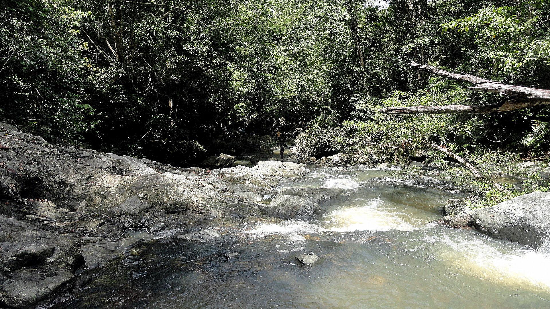 Mt Diamond Hike - Lower Falls from Upper
