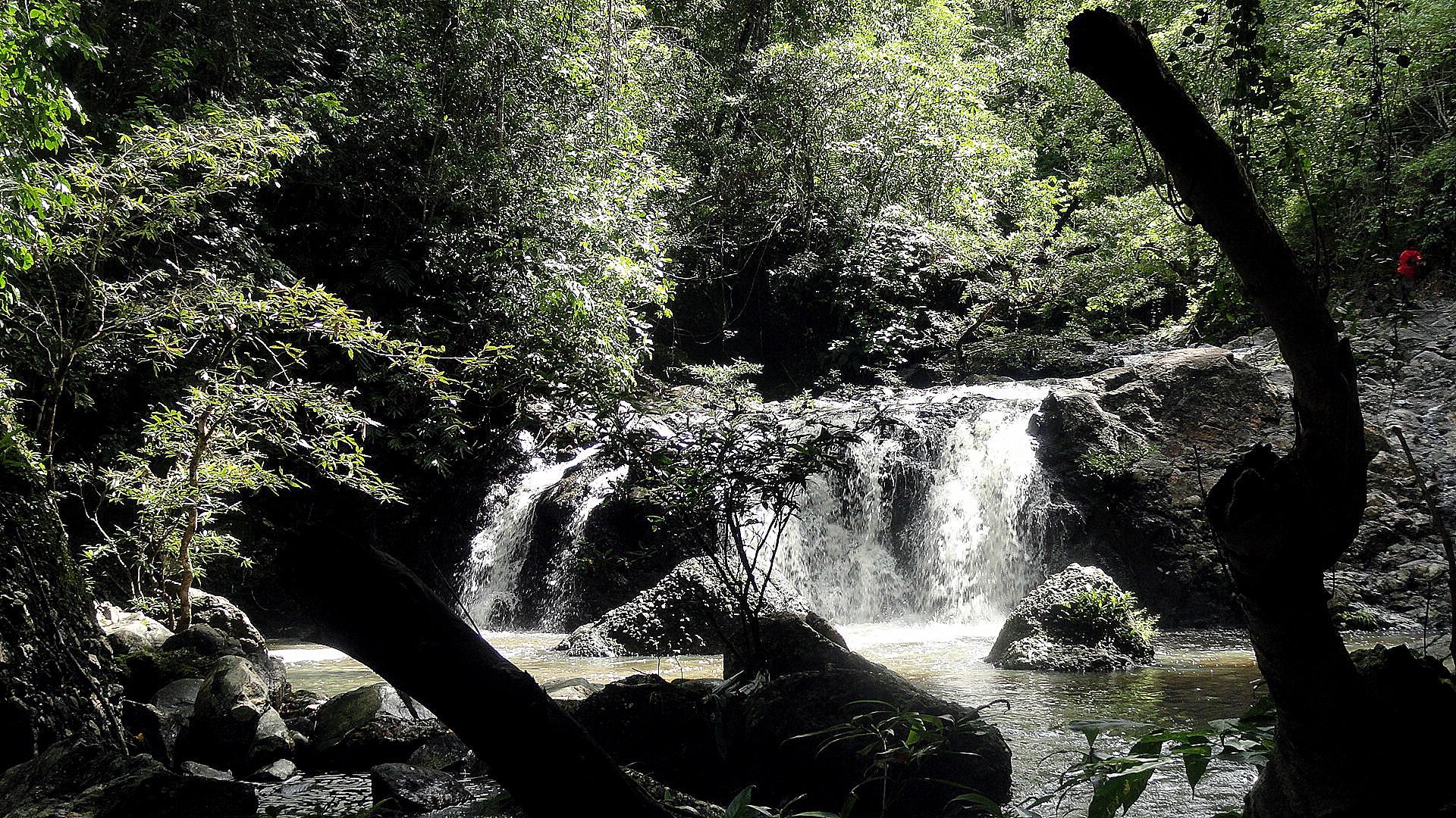 Mt Diamond Hike - Waterfall