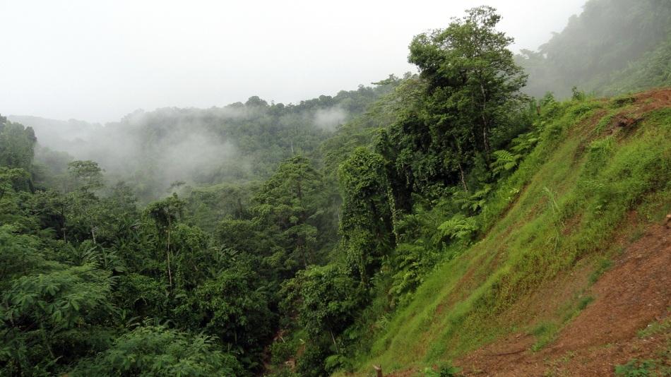 Land Slide Area - Bville