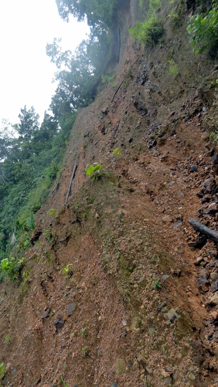 Looking up at Landslide Area