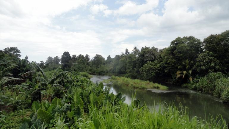River on Bville Main Island