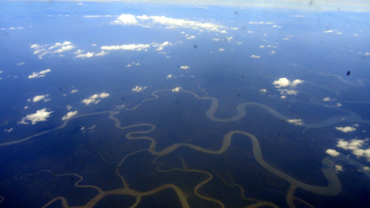 Rivers of Gulf State from Plane