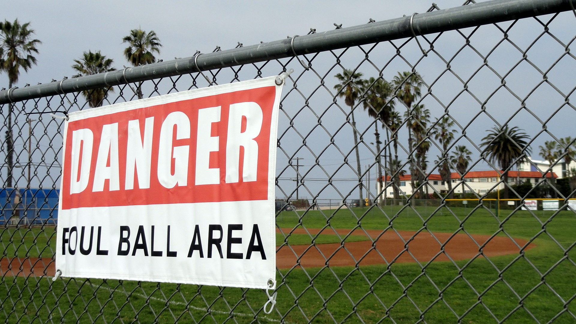 PDR Foul Ball Area