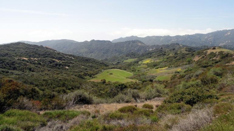 Topanga Cyn Hills