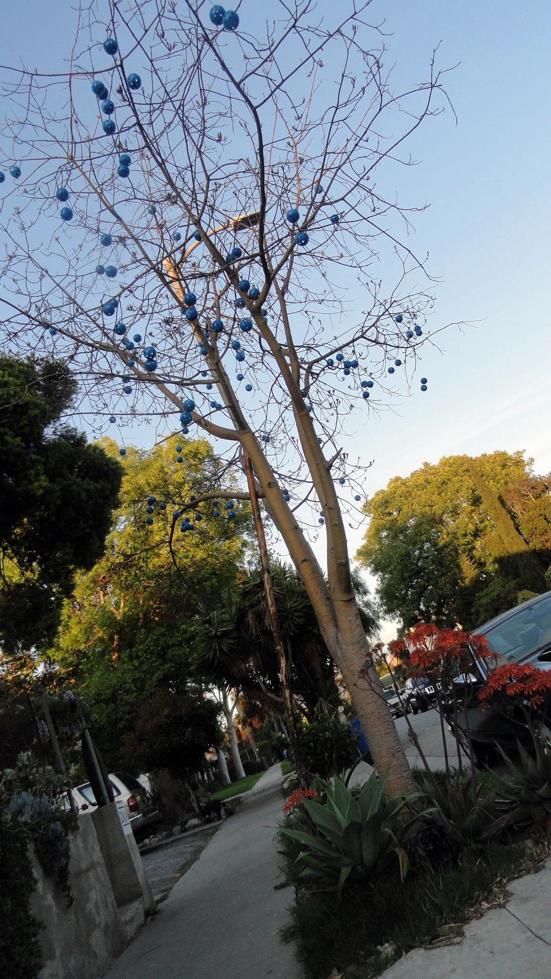 Venice - Decorated Tree