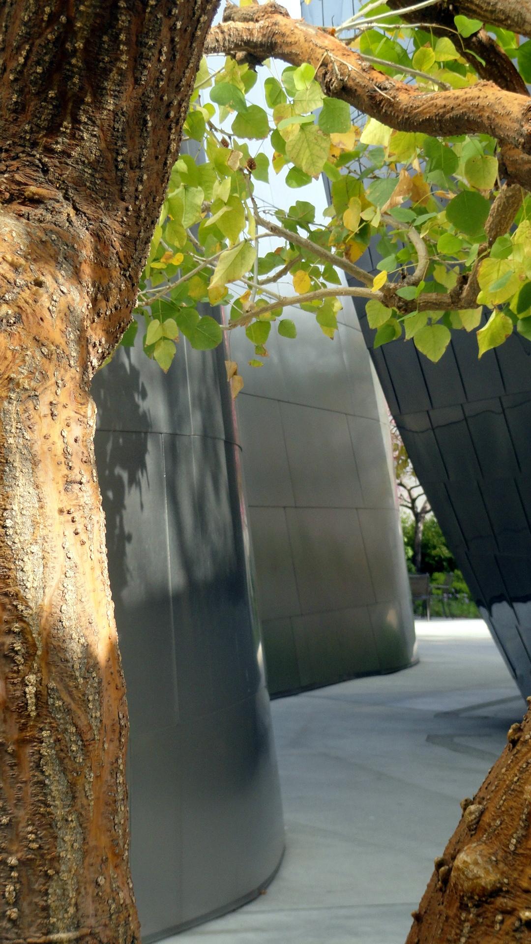 WDCH - Walls in Garden