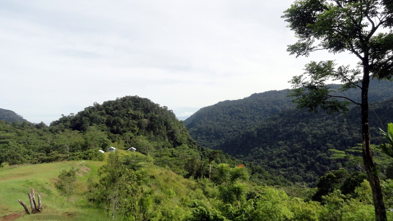 1.2 Kokoda - Owers Corner