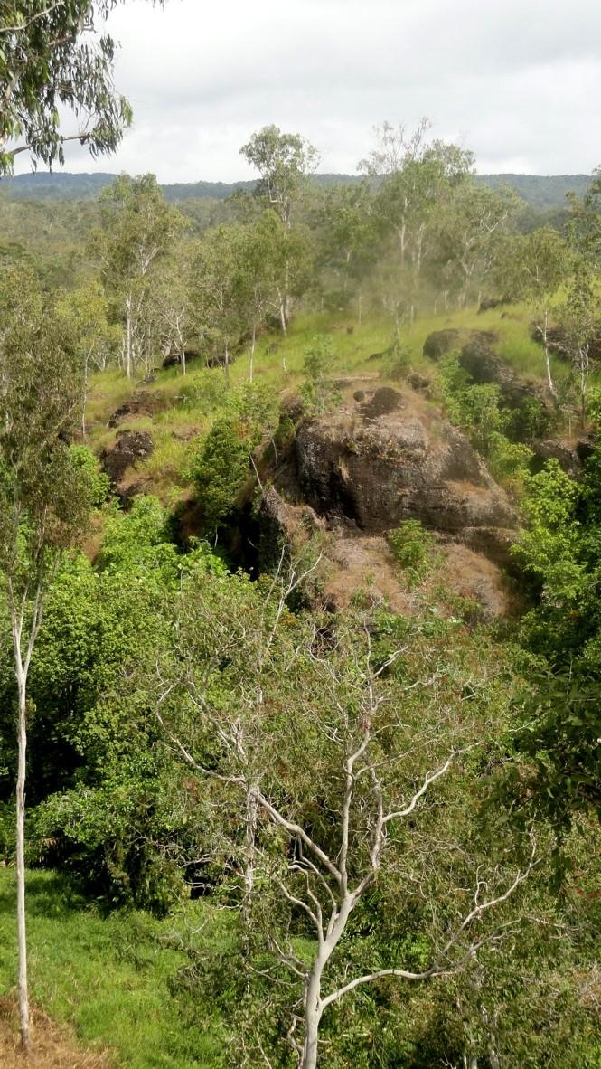 Grassy Hills & Trees - RP Walk