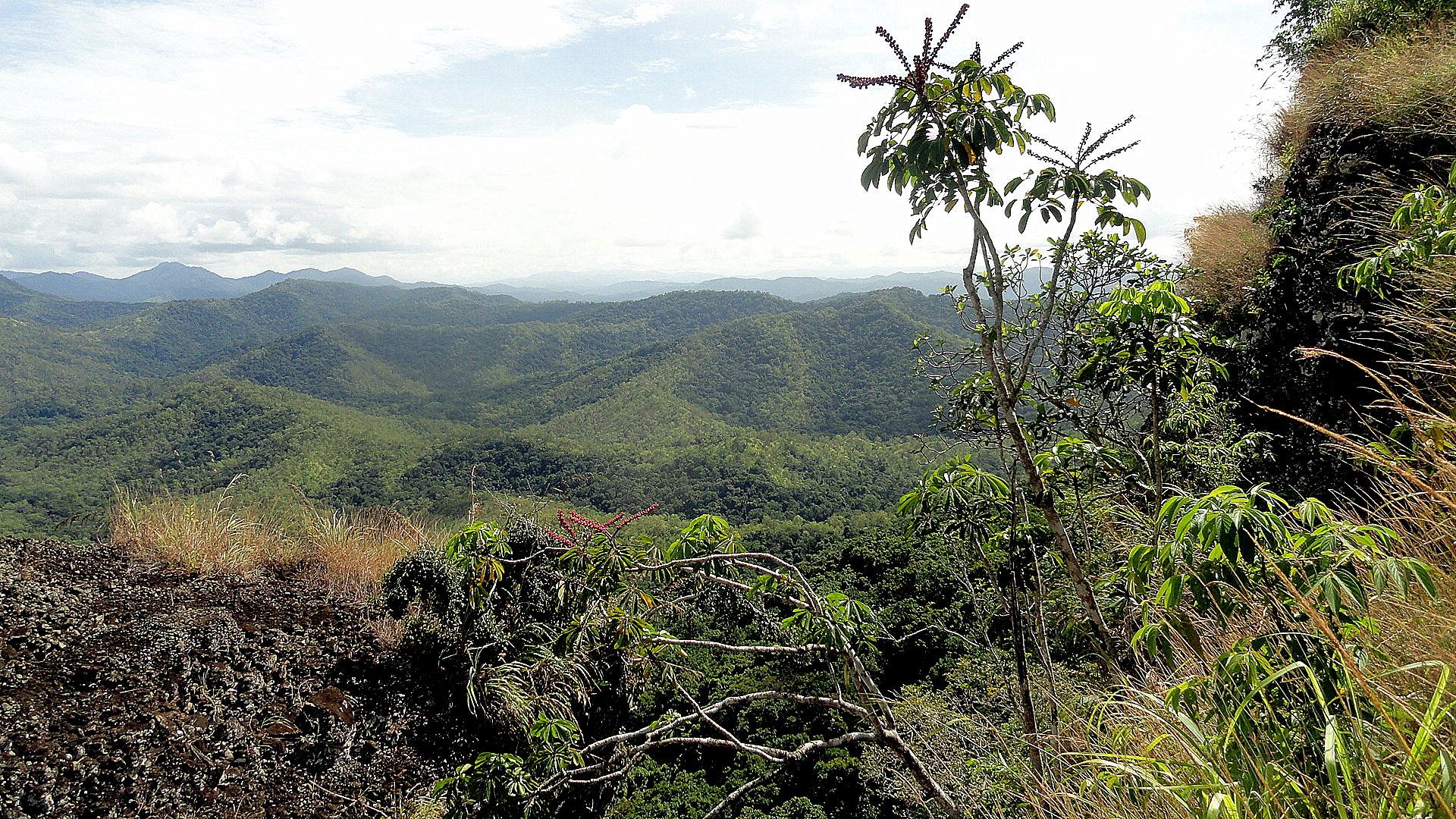 Vista from RP Walk