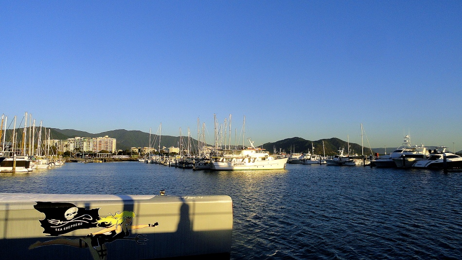 Cairns Marina & Mountains