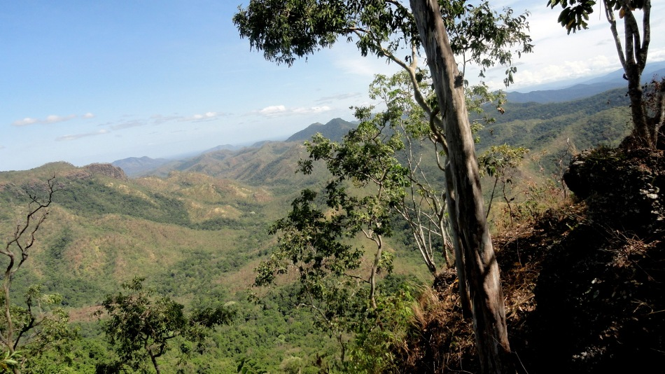 Dry Season Trees & Hills