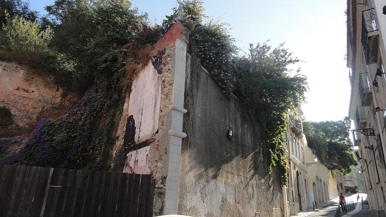 Castelo Overgrown Lot & Steet