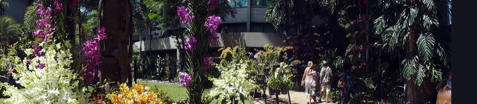 Parlt House Garden Orchen Pano