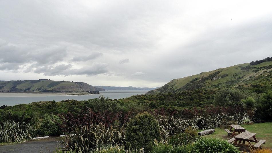 Dunedin Hrbor Hills