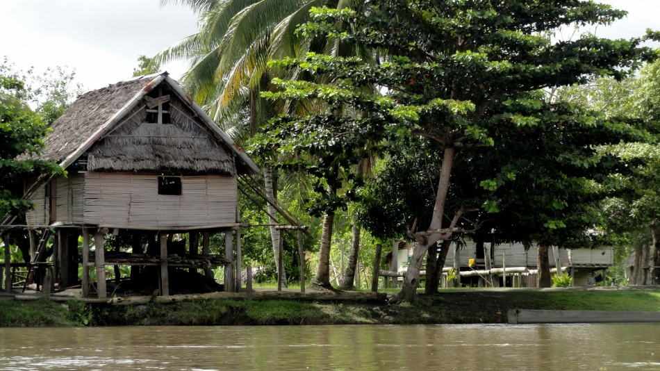 Sepik Riverside House