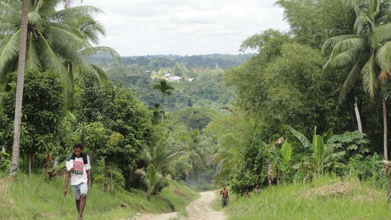 Brugam from Opposite Hillside 2