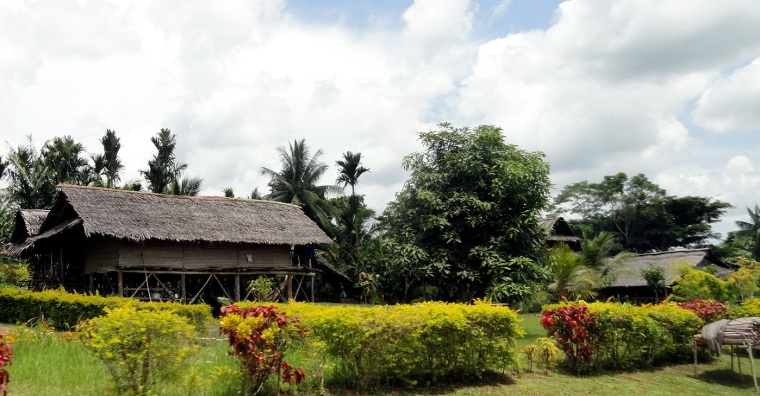 Roadside House & Hedge
