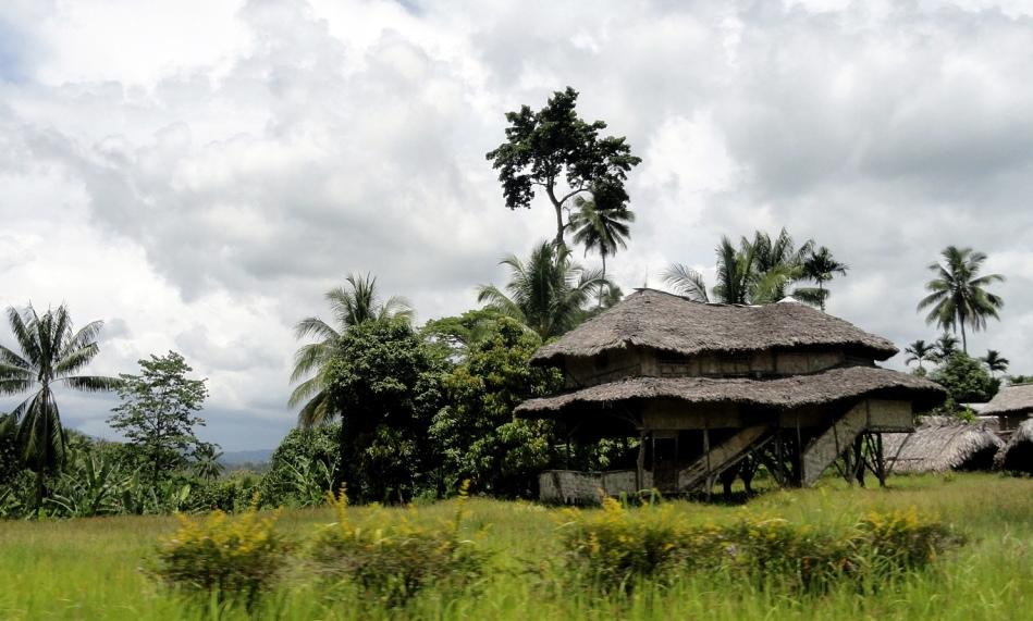 Roadside House & Yard