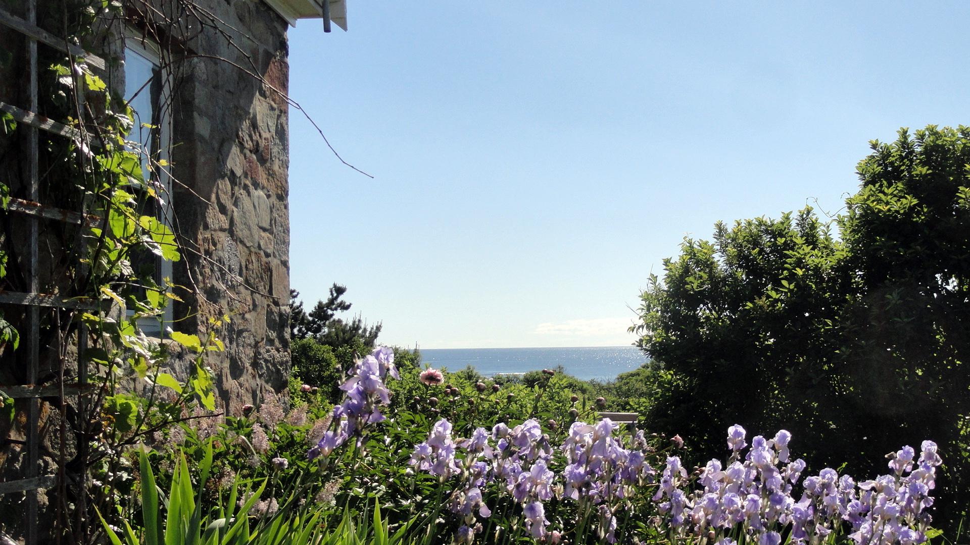 Blue Iris - Stone House - Coastal Horizon