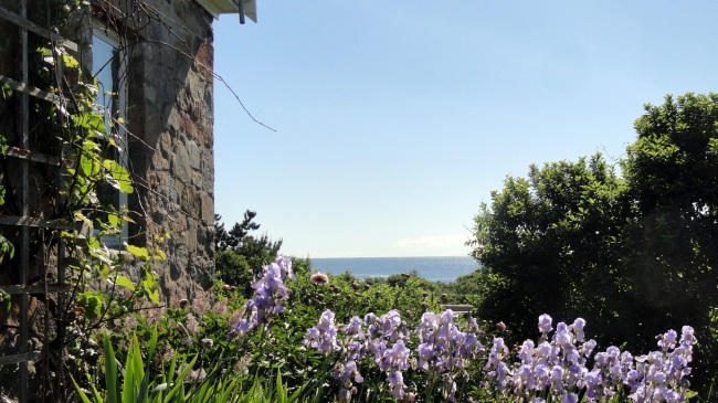 Blue Iris - Stone House - Coastal Horizon