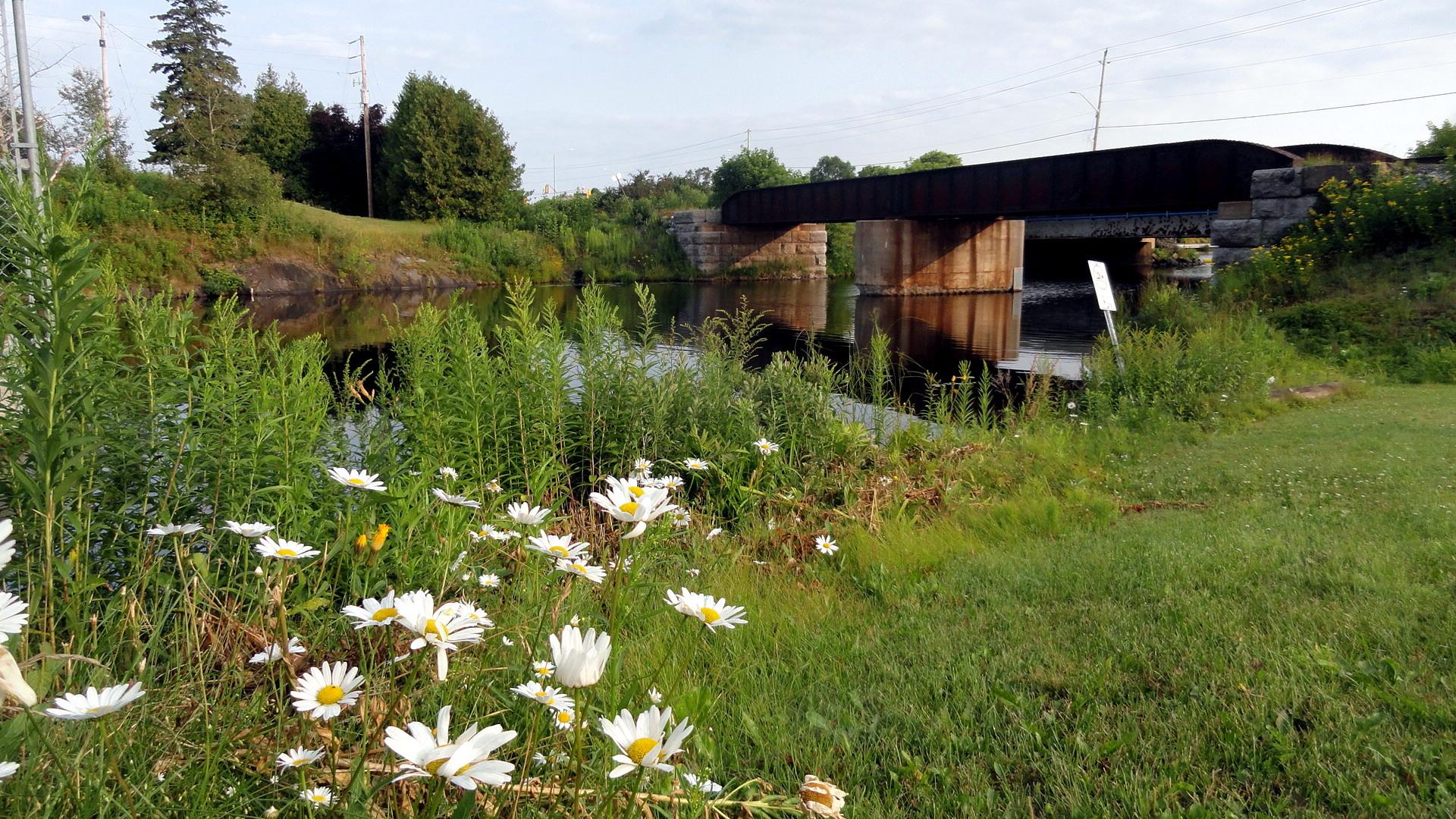 Blind River Rail & Road Bridge