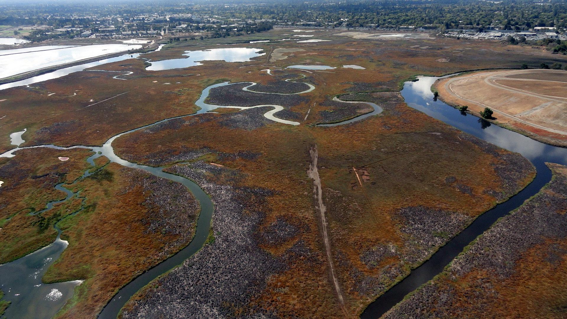 Aerial Palo Alto 6