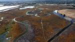 Aerial Palo Alto6