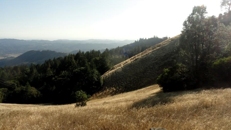 Grassy Field 3 Palisades Trail