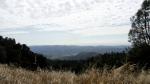 Napa Valley from RidgeHike