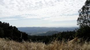 Napa Valley from Ridge Hike