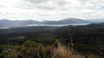 Lake Rotaira From T Crossing