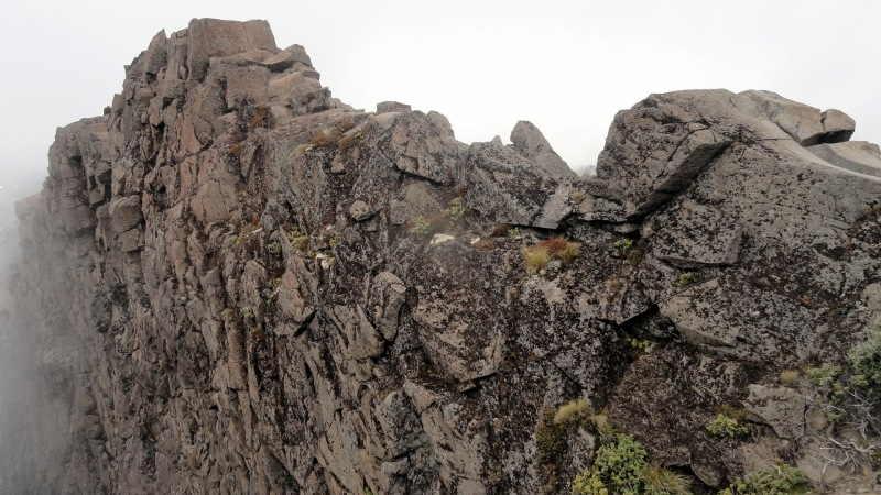 Ruapehu Rock Wall - Lichen - Mist