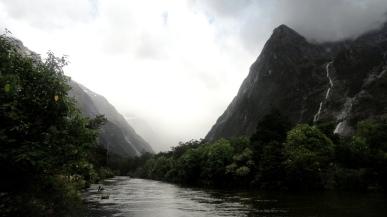 Ducks on River in Rain