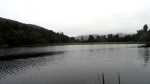 Foggy Lake MathesonView