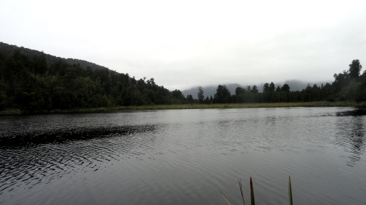 Foggy Lake Matheson View