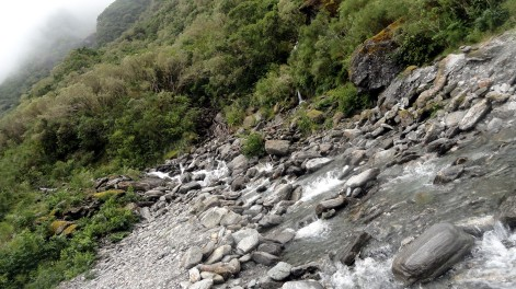 Fox Valley Stream