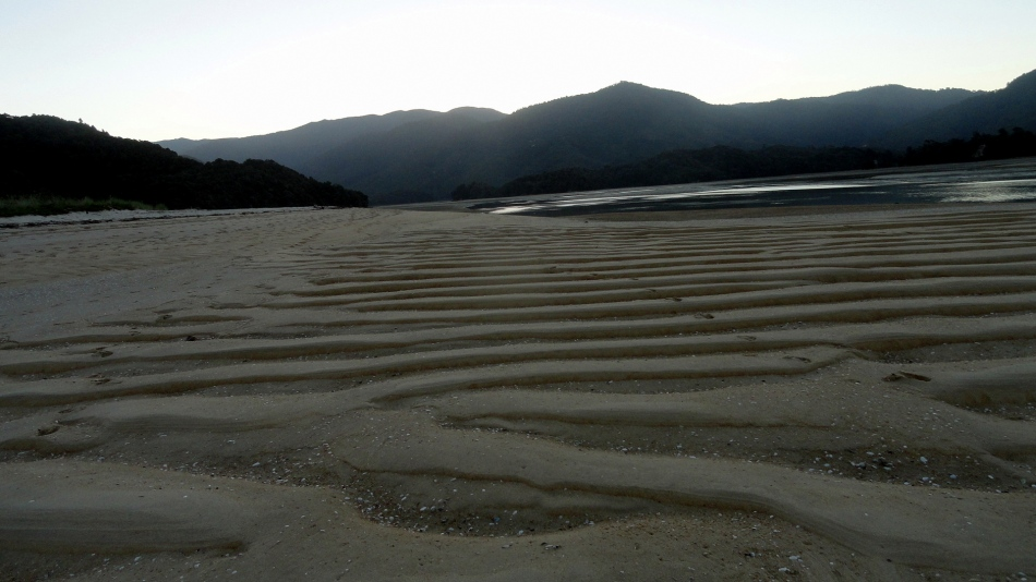 Low-Tide Awaroa Bay Hills & Wave Sands