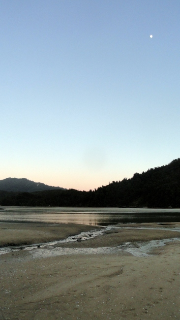 Low-Tide Awaroa Bay Moonset