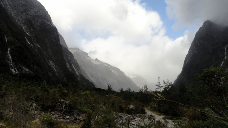 Milford  Track Valley Vista