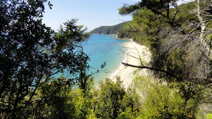 Tasman Coast 4