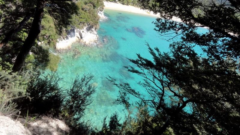 Tasman View 5