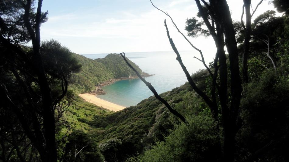 Tasman Whariwharangi Bay