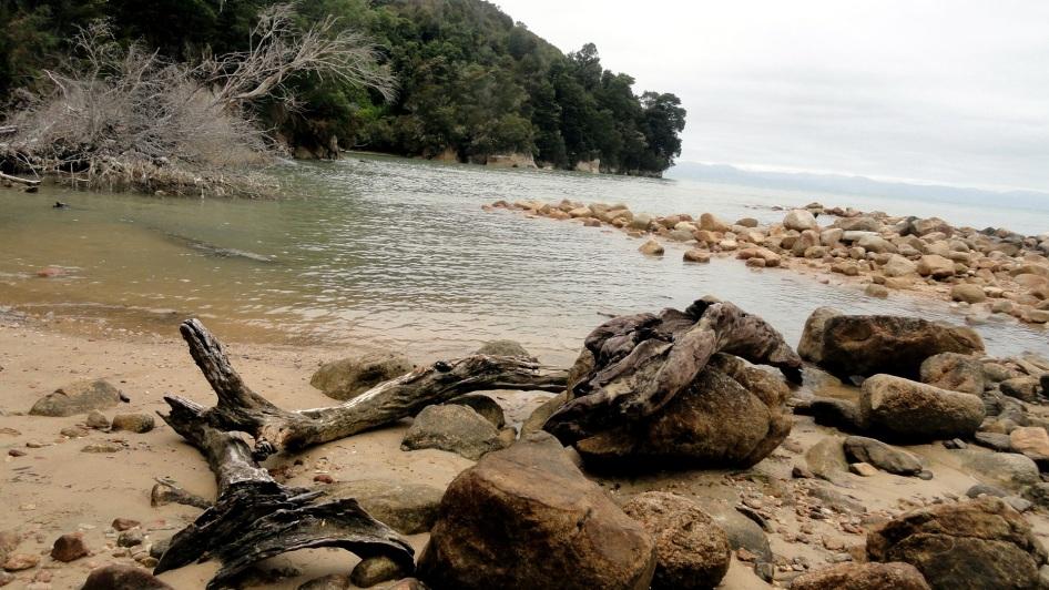 Torrent Bay Crossing 3