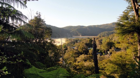 Torrent Bay from the Hills
