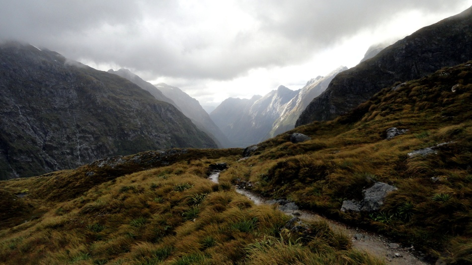 Trail Through McKinnon Pass