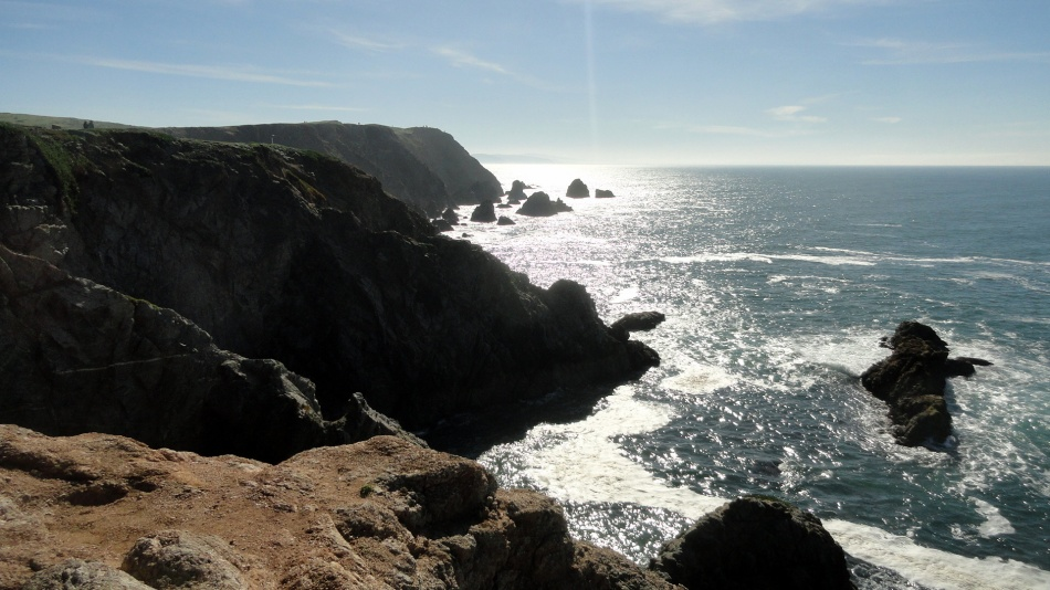 Bodega Head Cliffs